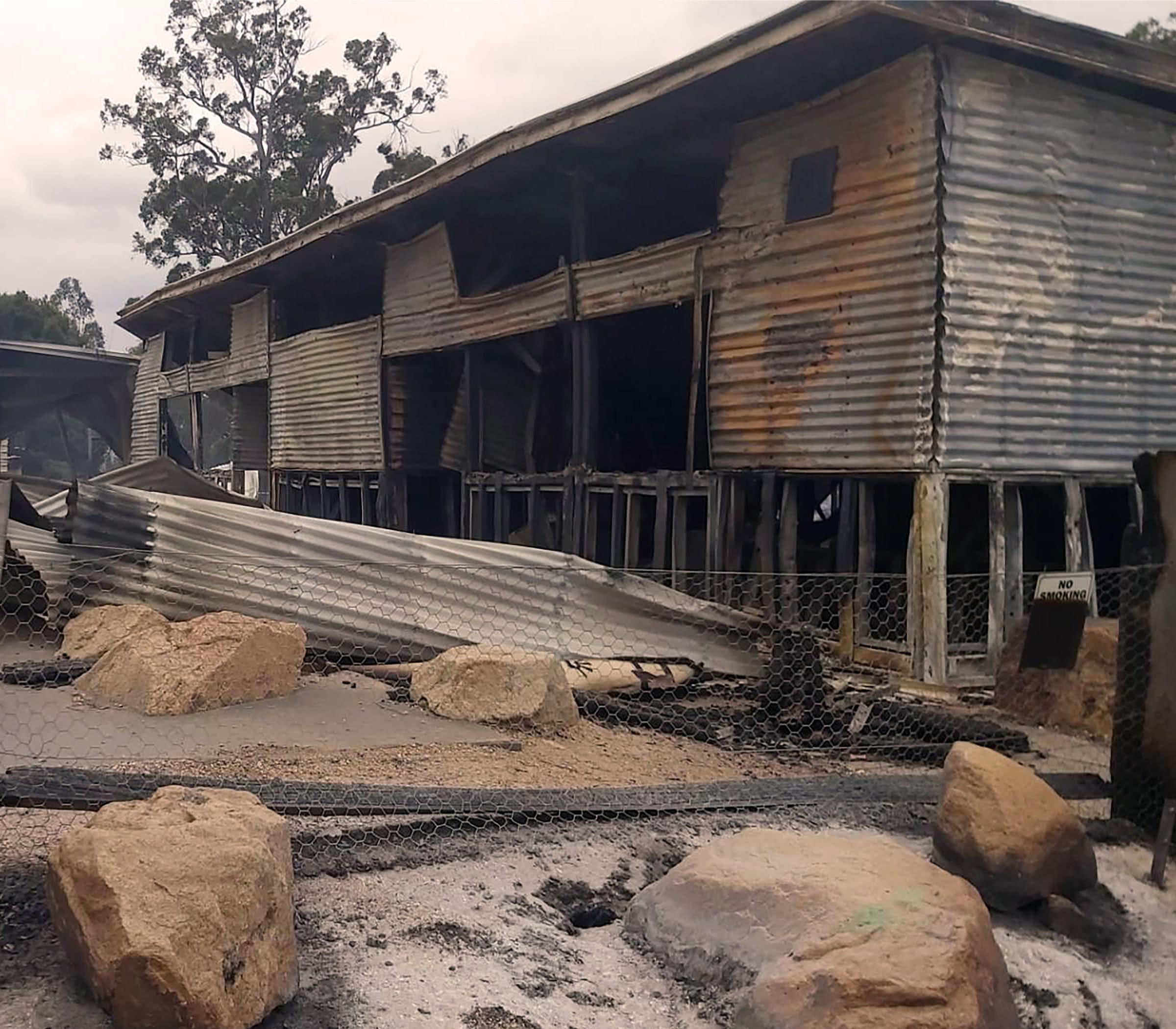Photo of a burnt school